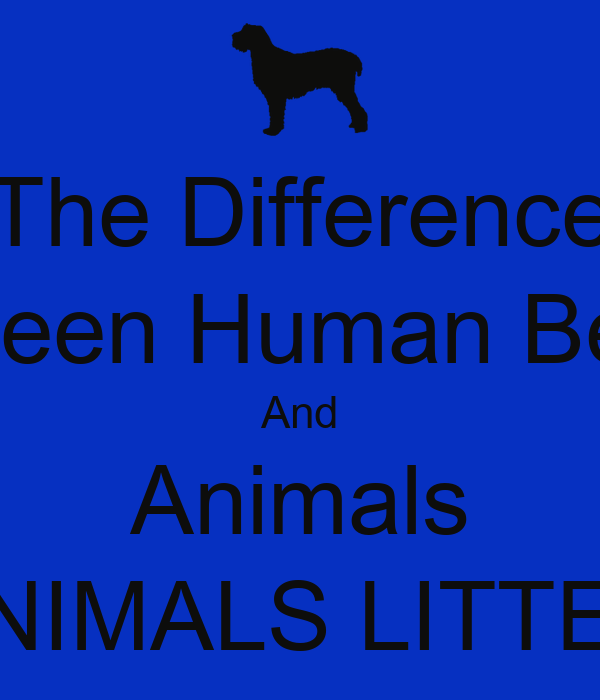 the difference between human beings and animals animals litter
