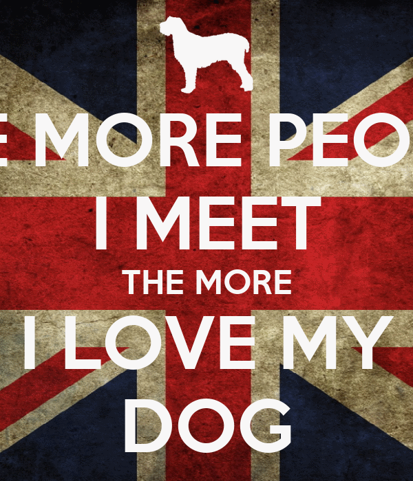 the more people i meet love my dog decal