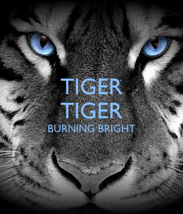 tiger tiger burning bright poem pdf