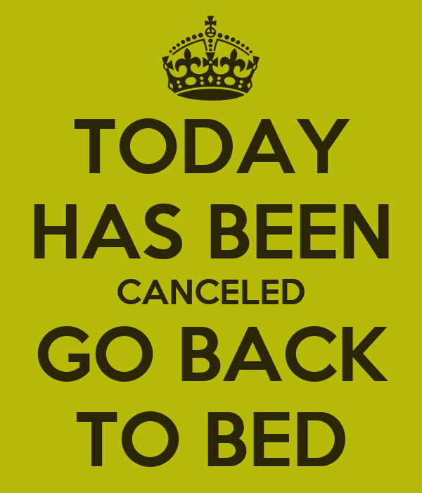 Today Has Been Canceled Go Back To Bed Poster Nina