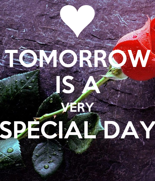 a very special day essay