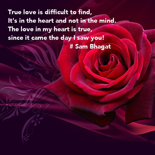 when i find my true love