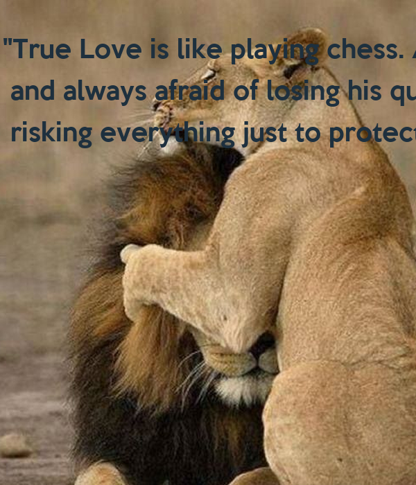True Love Is Like Playing Chess A Boy Plays And Always Afraid Of