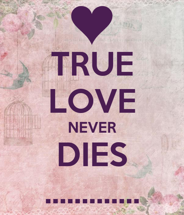 true love never dies alone Love never dies is a roller years the phantom has hidden himself amongst the freaks and sideshows nursing his broken heart and yearning for his true love to.