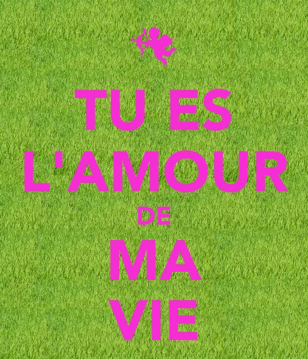 Tu Es L Amour De Ma Vie Poster Seb Keep Calm O Matic