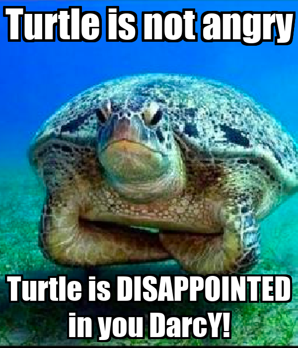 Disappointed turtle meme - photo#13