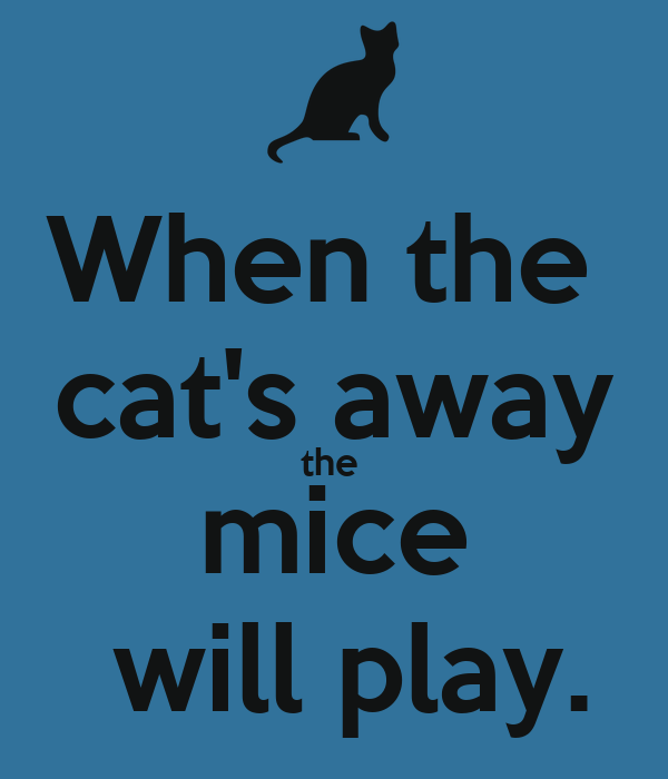 Image When The Cat S Away The Mice Will Play