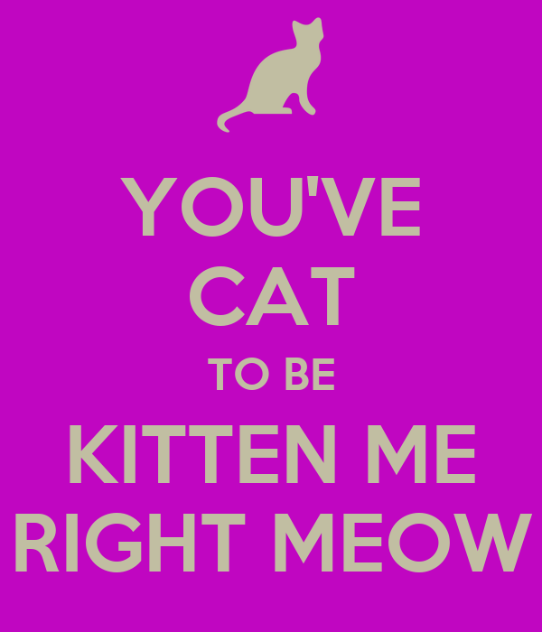 You Ve Cat To Be Kitten Me Right Meow